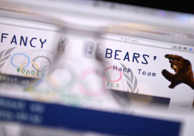 Hackerská skupina Fancy Bears