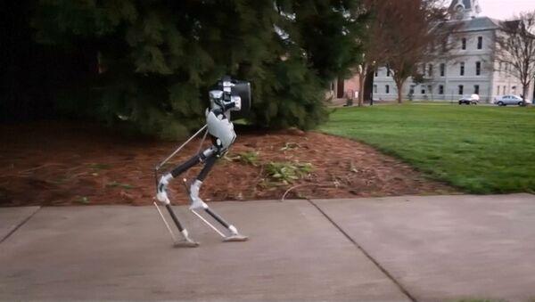 Američtí vědci vytvořili chodícího robota - Sputnik Česká republika