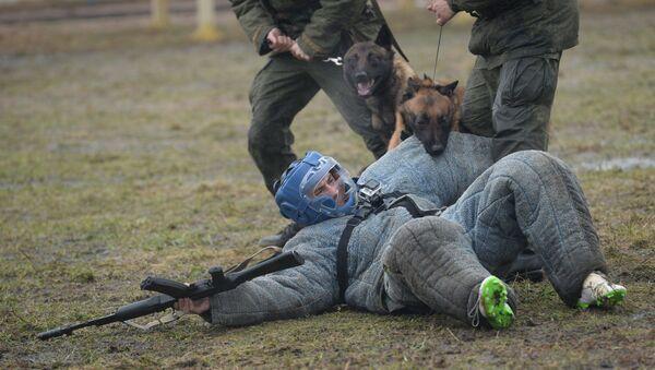 Trénink služebních psů Ruské národní gardy - Sputnik Česká republika