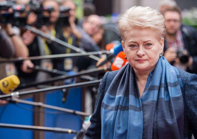 Litevská prezidentka Dalia Grybauskaitė