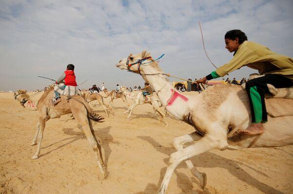Jezdci, většinou děti, na velbloudích dostizích na poušti nedaleko města Ismailie v Egyptu - Sputnik Česká republika