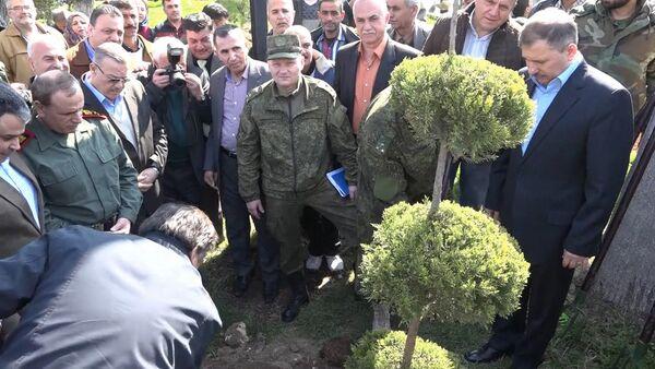 Ruští vojáci vysadili stromy v Aleppu - Sputnik Česká republika