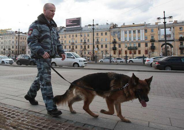 Petrohrad po teroristickém útoku