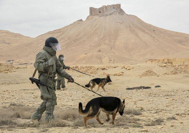 Ruský voják v Palmýře