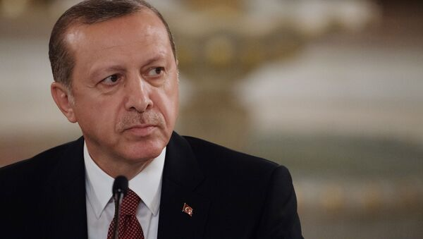 Prezident Turecka Tayyip Erdogan - Sputnik Česká republika
