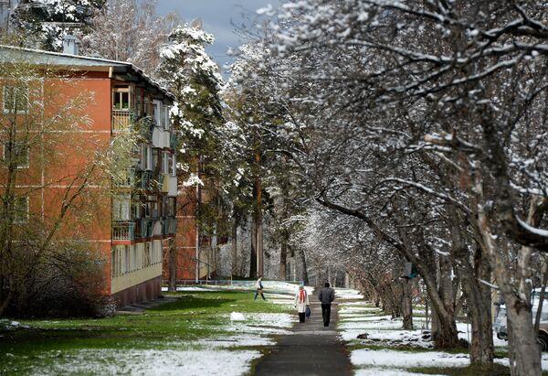 Obyvatelé na ulici po sněžení v novosibirském Akademickém městečku - Sputnik Česká republika