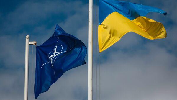 Vlajky NATO a Ukrajiny - Sputnik Česká republika