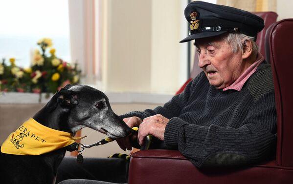 Снимок-победитель конкурса DPOTY в категории Assistance dogs фотографа Julian Gottfried - Sputnik Česká republika