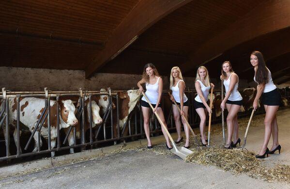 Modelky v kravinci během prezentace kalendáře Bavarian and Austrian farmer wives calendar - Bavarian girls edition 2018 v bavorské vesnici - Sputnik Česká republika