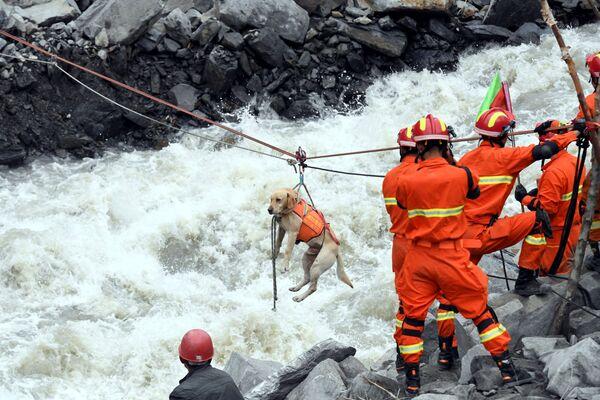 Záchranáři evakuují psa z místa sesuvu půdy v čínské provincii S'-čchuan - Sputnik Česká republika