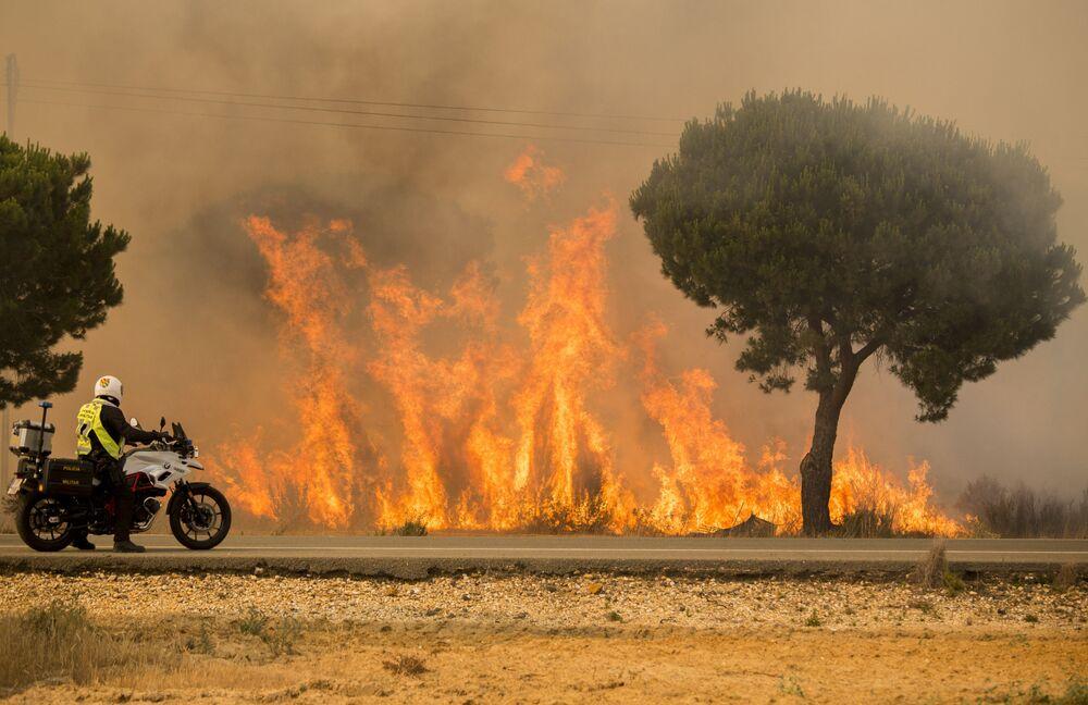 Policista pozoruje šíření lesního požáru na jihu Španělska