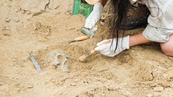 Archeologové. Ilustrační foto - Sputnik Česká republika