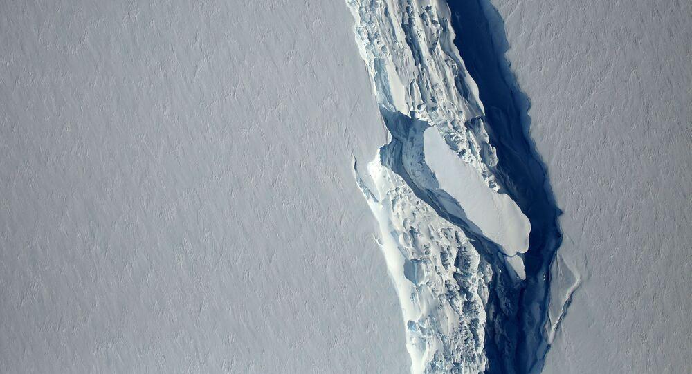 Ledovec Larsen C