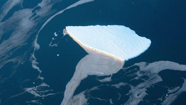 Ledovec v Antarktidě - Sputnik Česká republika