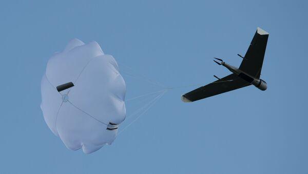 Demonstrační lety dronů - Sputnik Česká republika