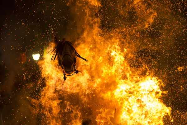 Viсtor Blanсo s fotkou Očišťující oheň se dostal na třetí místo v soutěži v nominaci Moje planeta. Jednotlivé fotografie - Sputnik Česká republika