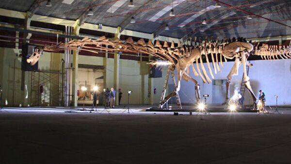 Obří dinosaurus z Patagonie - Sputnik Česká republika