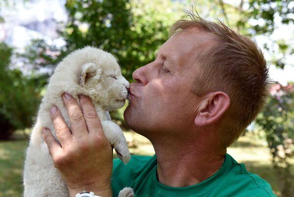 První dny života bílých lvíčat na Krymu - Sputnik Česká republika