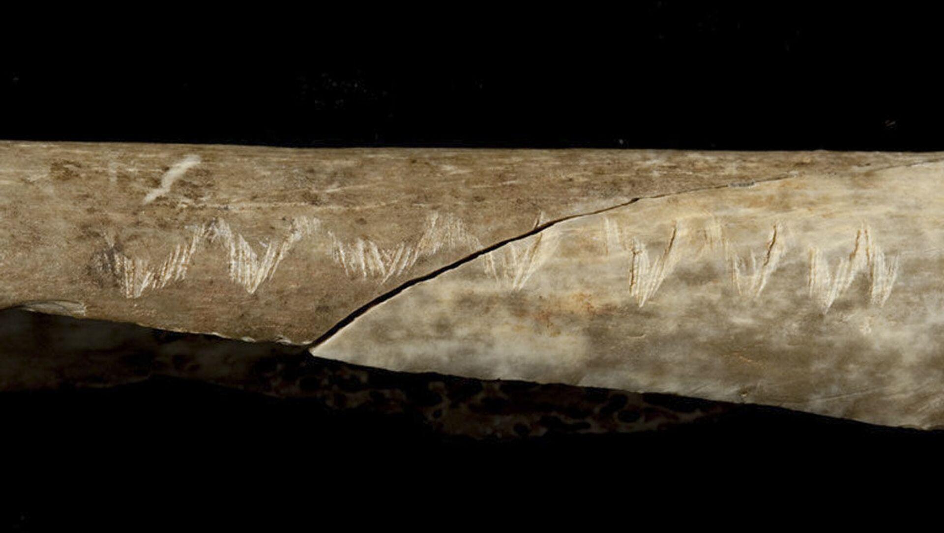 Starobylá kost se podivnými znaky - Sputnik Česká republika, 1920, 11.02.2021