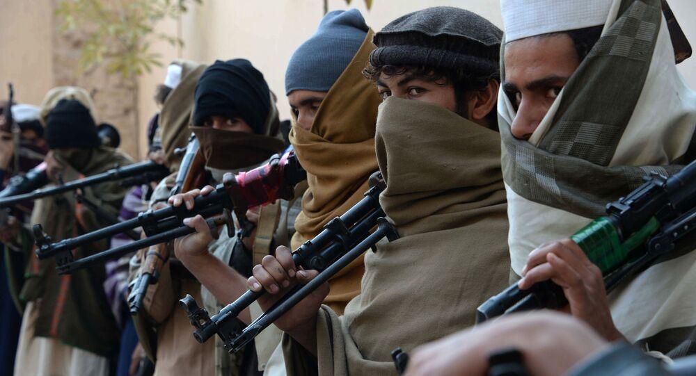 Tálibové