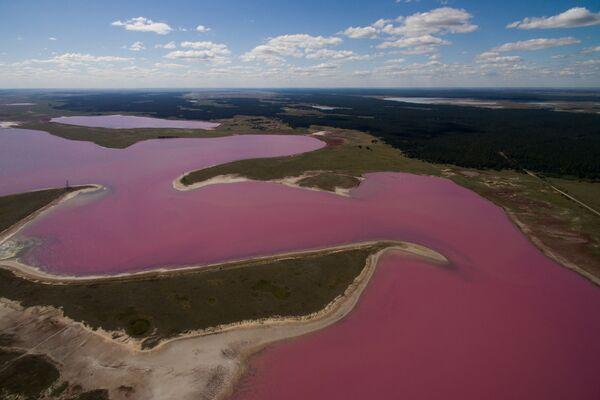 Odpočinek u růžových jezer Altajského kraje - Sputnik Česká republika