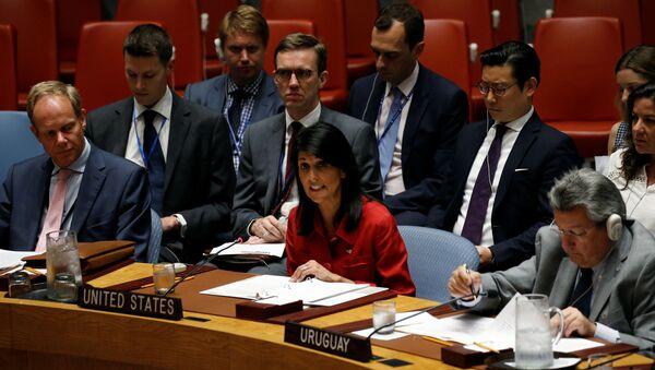 Americká stálá představitelka při OSN Nikki Haleyová během zasedání Rady bezpečnosti - Sputnik Česká republika