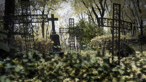 Hřbitov Donského kláštera - Sputnik Česká republika