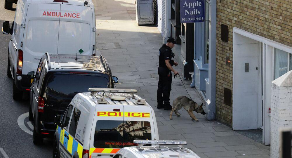 Policie Velké Británie