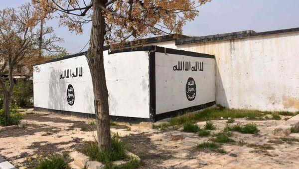 Symbol IS v provincii Aleppo - Sputnik Česká republika