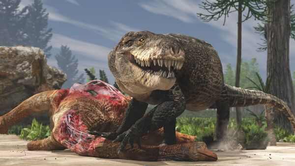 Pravěký gigantický krokodýl Razanandrongobe sakalavae, který žil a lovil na souši - Sputnik Česká republika