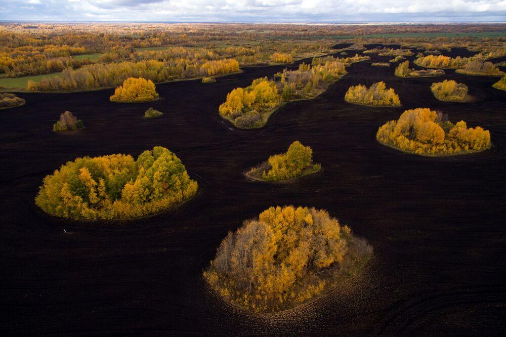 Zlatý podzim na Sibiři