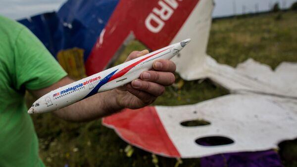 Model MH17 na místě jeho pádu - Sputnik Česká republika