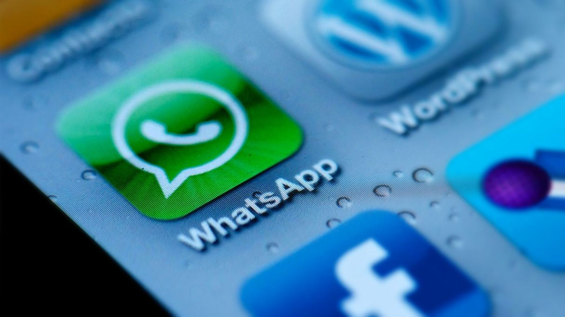 Messenger WhatsApp  - Sputnik Česká republika, 1920, 10.08.2021