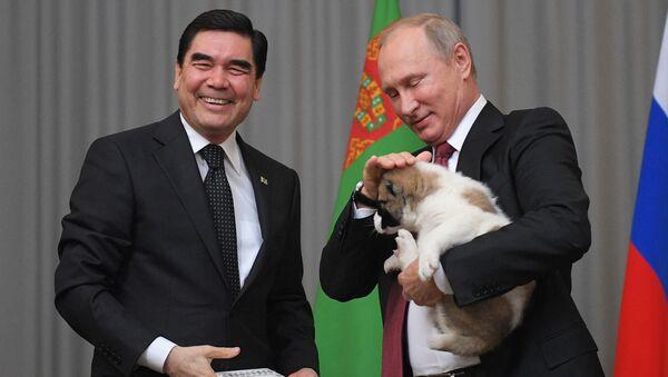 Gurbanguly Berdimuhamedow daroval Vladimiru Putinovi štěně pasteveckého psa - Sputnik Česká republika