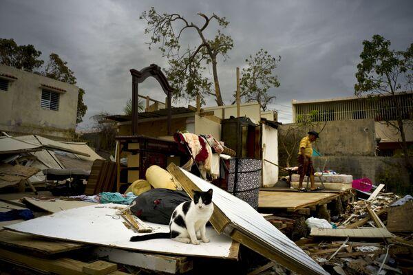 Škody způsobené uragánem Maria ve městě San Juan, Portoriko - Sputnik Česká republika