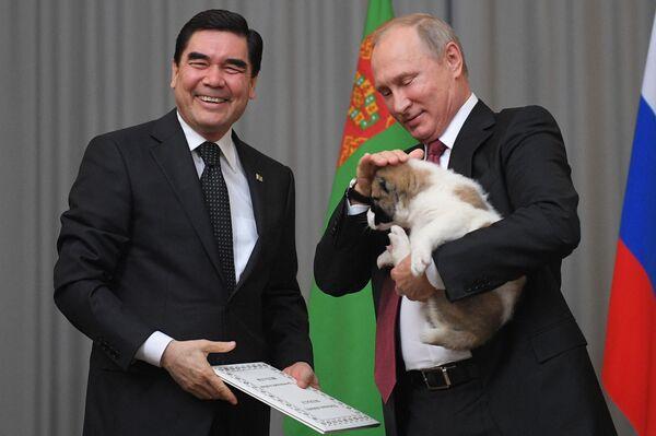Turkmenský prezident Gurbanguly Berdymuhamedov daroval štěně alabaje prezidentu RF Vladimiru Putinovi - Sputnik Česká republika