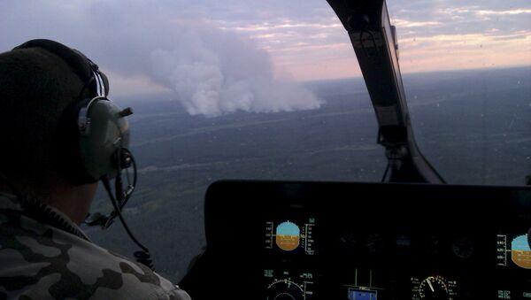 Požár v Černobylském pralese - Sputnik Česká republika