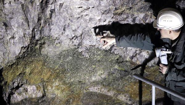 Prospektor Otto Janout ze společnosti Geomet v dolu nedaleko Cínovce ukazuje na rudu, která obsahuje lithium - Sputnik Česká republika