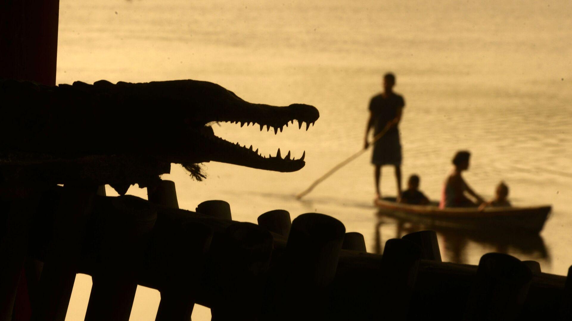 Muži loví ryby vedle krokodýla v Barra de Santiago. Salvador. - Sputnik Česká republika, 1920, 27.07.2021