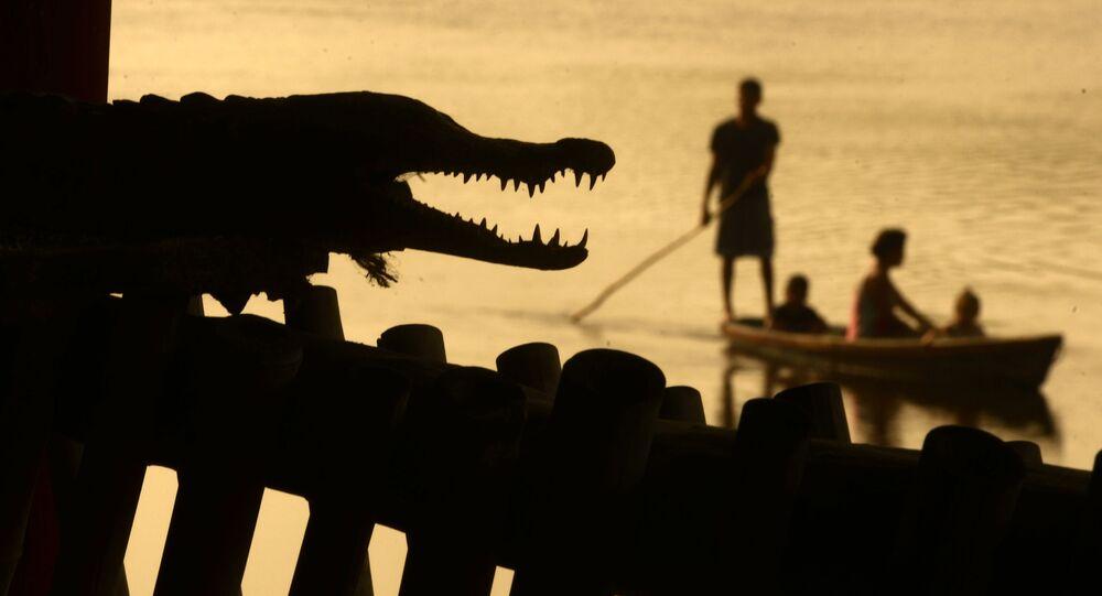 Muži loví ryby vedle krokodýla. Ilustrační foto