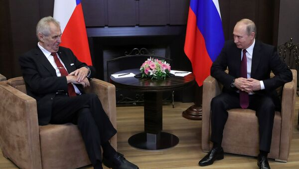 Schůzka ruského prezidenta Vladimira Putina s českým prezidentem Milošem Zemanem - Sputnik Česká republika