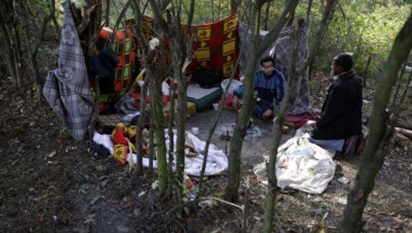 Сирийские беженцы в самодельном убежище возде деревни Боговадия на территории Сербии - Sputnik Česká republika