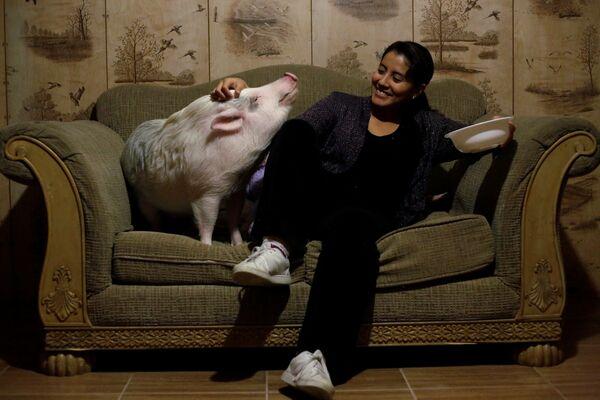Yissel Mendoza a její prase Balu u sebe doma ve městě Ciudad Juarez, Mexiko - Sputnik Česká republika