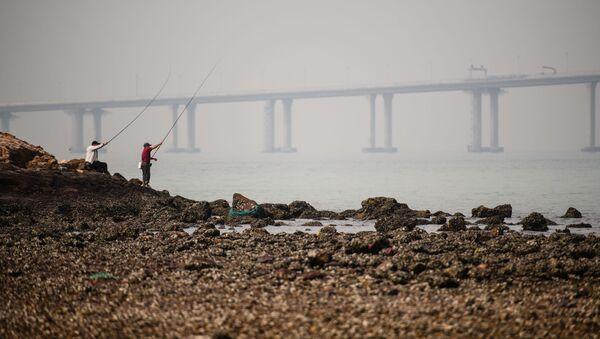 Pohled na čínský most Hong Kong-Zhuhai-Macao - Sputnik Česká republika