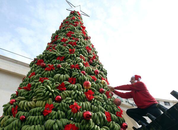 Vánoční stromek z tuny banánů v Libanonu - Sputnik Česká republika