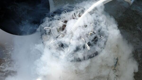 Zamrazení tekutým dusíkem - Sputnik Česká republika