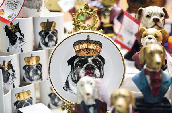 Pravidla, která musíte dodržovat, aby vám Žlutý zemský pes přinesl štěstí - Sputnik Česká republika