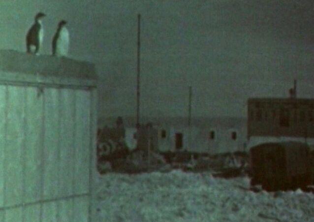 První sovětská expedice v Antarktidě. Video