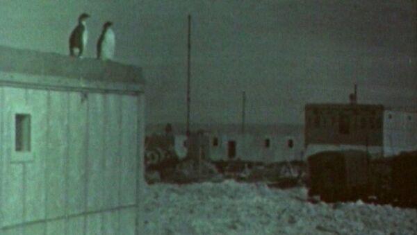 První sovětská expedice v Antarktidě. Video - Sputnik Česká republika