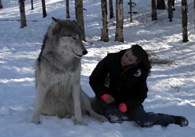 Vlk Kekoa a Danielle